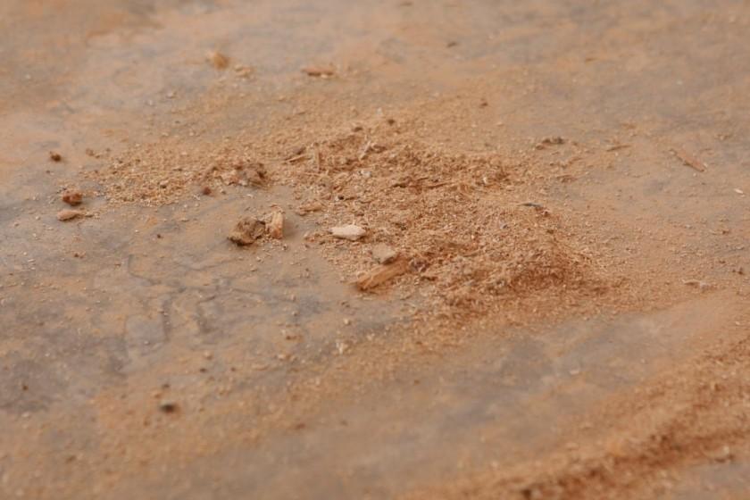 musicroomsawdust.jpg